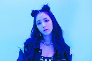 SM Town Artist BoA